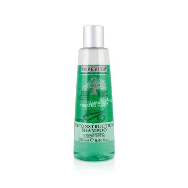 Șampon de reconstrucție pentru păr uscat 250ml